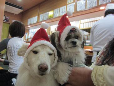 2010.11.27モコれおサンタ