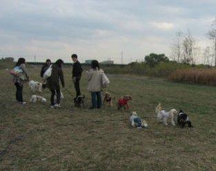2010.11.27お散歩