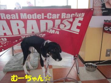2010.11.28むーちゃん