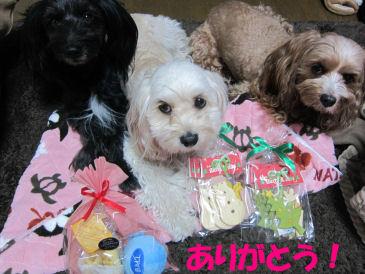 2010.12.13クリスマスぷれ