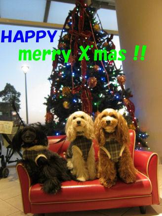 2010.12.24メリークリスマス