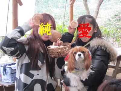 2010.12.30しいたけガールズ