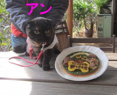 2010.12.30アンちゃん