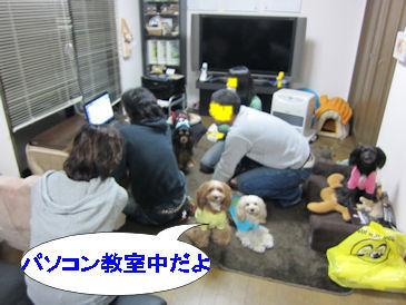 2011.1.2PC教室