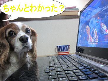2011.1.16ちゃんとわかったかな~?