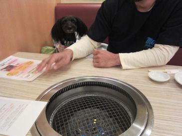 2011.1.29なつこ