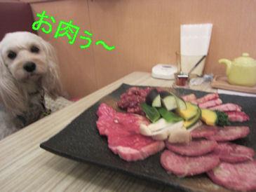 2011・1・29肉ぅ