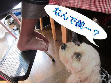 2011.2.6じゅんいち?