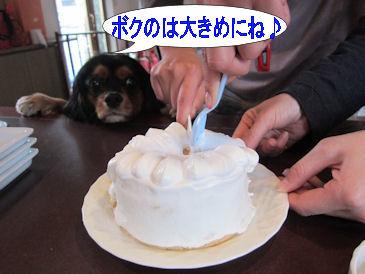 2011.2.20切り分け