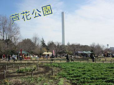 2011.3.6芦花公園