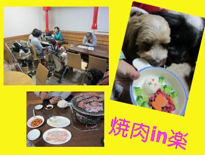 2010.12.11やきにく