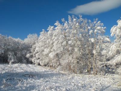 白銀と青の世界