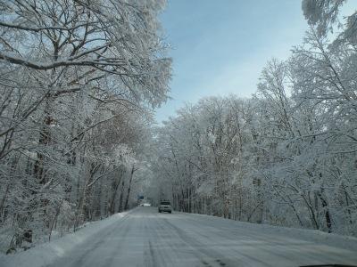 白銀の樹氷トンネル