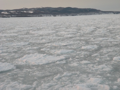 流氷 網走に接岸