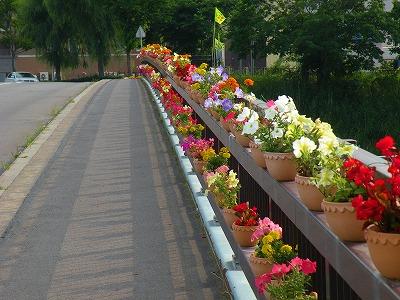 花いっぱい橋