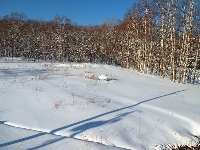 2月19日の雪風景