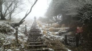 塔ノ岳02
