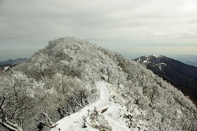塔ノ岳11