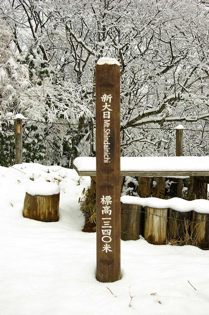 塔ノ岳14