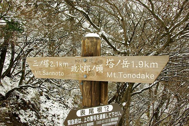 塔ノ岳18