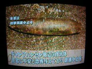 沖縄の流れ弾