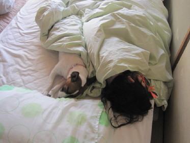 やっと寝てくれました