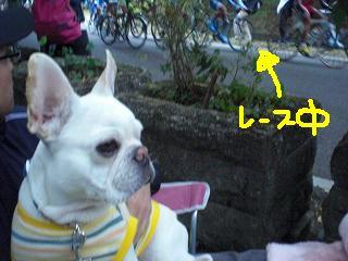 CIMG8492.jpg