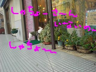 CIMG8923.jpg