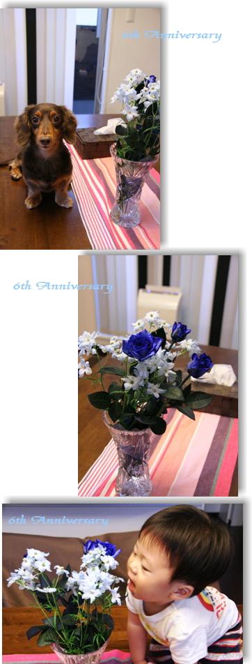20070731-01.jpg