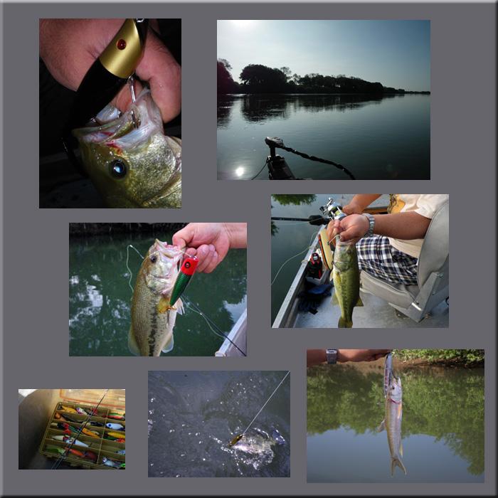 blog_20090907165125.jpg