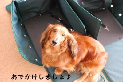 db5_20090929195158.jpg