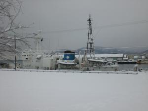 埠頭公園の船