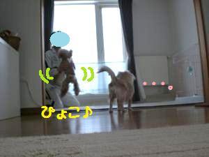パパと遊ぼう7