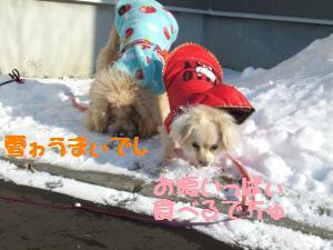 雪を食らう子達2
