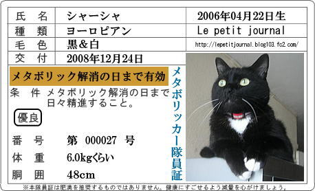 metabo char-chat