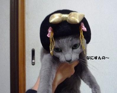 ルル姫参上