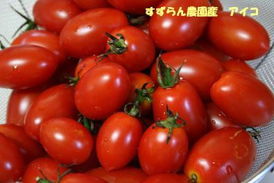 2009/09/20 その1