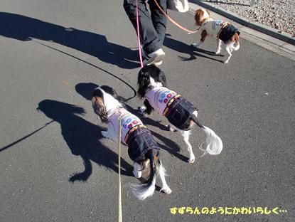 2010/01/03 その2