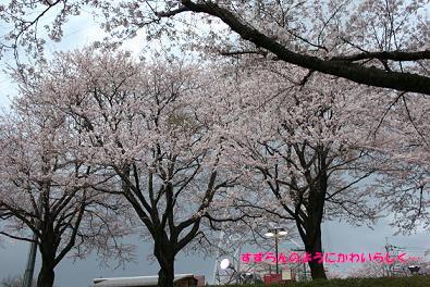 2010/04/03 その2