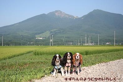 2009/08/17 その1