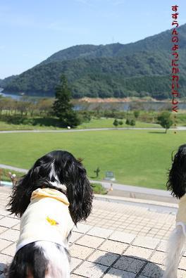 2009/09/10 その1