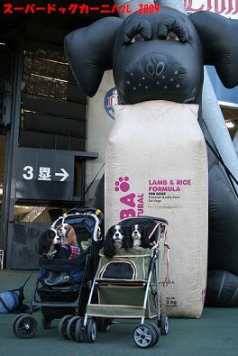 2009/11/15 その1