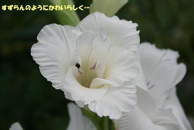 2009/07/12 その2