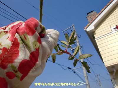 2010/01/24 その2