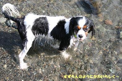 2009/07/25 その4