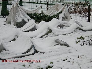 2010/02/02 その2