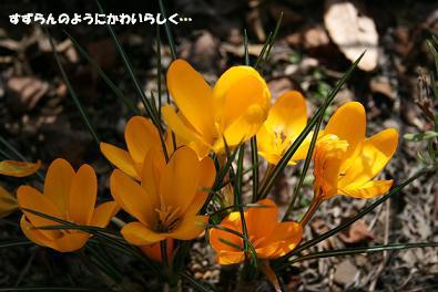 2010/03/20 その4