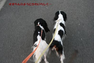 2009/09/25 その2