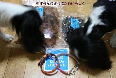 2009/11/15 その4