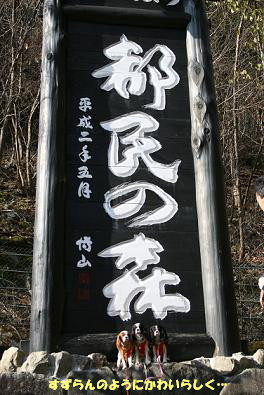 2009/11/28 その1